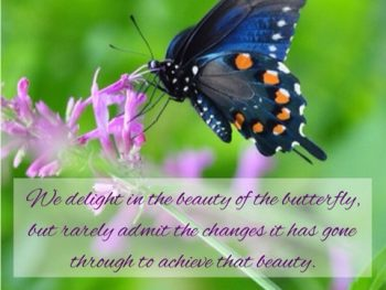 Maya Angelou Quote About Beauty and Change