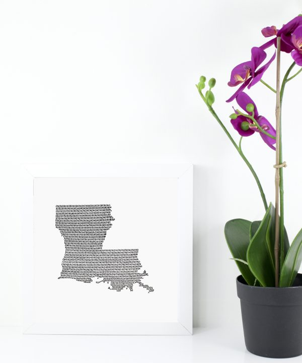 State of Louisiana Art Print