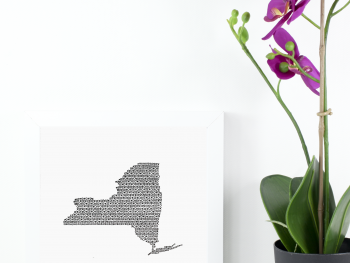 State of New York Art Print