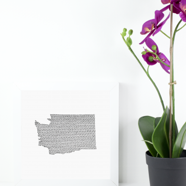 State of Washington Art Print